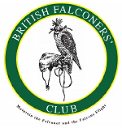 cropped-BFC-Logo-small-1.png